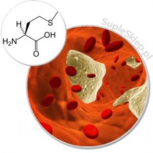l-metionina-methionine-culevit calivita-odprono??-naturalne suplementy diety