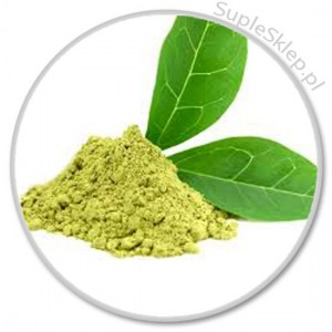 zielona herbata-green tea-polifenole-flawonoidy-mega q protect-antyoksydanty-calivita