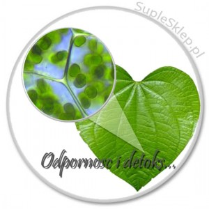 chlorofilina-chlorofil-spirulina chlorella plus-spirulina i chlorella-algi morskie-setoks-detox