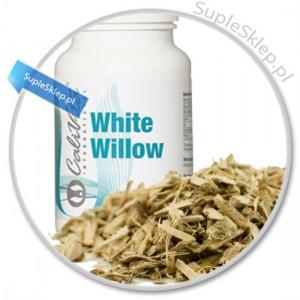 white willow bark-white willow calivita-kora białej wierzby-kwas salicylowy-naturalna aspiryna-prawdziwy kwas salicylowy-white willow bar-migreny calviita-white willow dawkowanie-white willow cena-white willow właściwości-kora wierzby właściwości