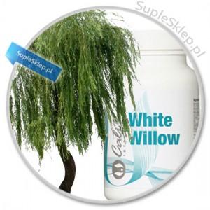 white willow drzewo-wierzba bia?a-white willow calivita-kora białej wierzby-kwas salicylowy-naturalna aspiryna-prawdziwy kwas salicylowy-white willow bar-migreny calviita-white willow dawkowanie-white willow cena-white willow właściwości-kora wierzby właściwości